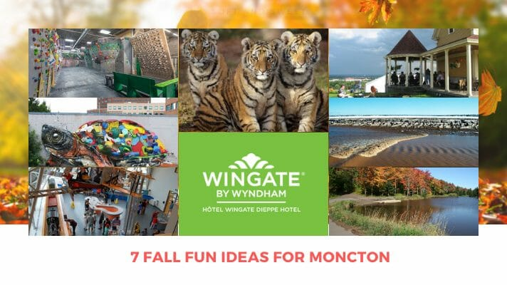 7 fall fun ideas for moncton new brunswick zoo mural art parks wine tidal bore rock-climbing museum